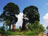 Thiền Sư Đạo Viên